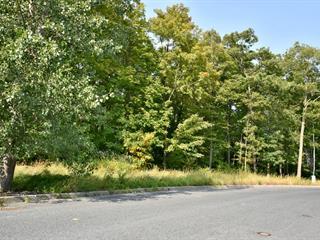 Terrain à vendre à Mont-Saint-Hilaire, Montérégie, Rue du Sommet, 12900908 - Centris.ca