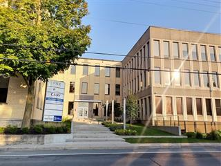 Commercial unit for rent in Granby, Montérégie, 25 - 39, Rue  Dufferin, suite 302, 27078410 - Centris.ca