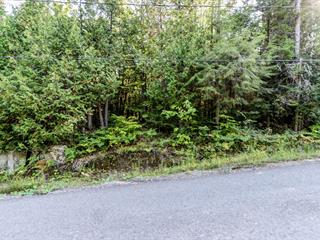 Lot for sale in Wentworth-Nord, Laurentides, Chemin du Lac-Richer, 24078440 - Centris.ca