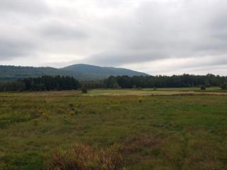 Terrain à vendre à Bromont, Montérégie, 209A, Chemin de Granby, 24373543 - Centris.ca