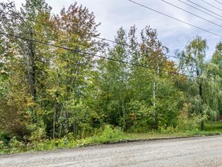 Lot for sale in Sherbrooke (Brompton/Rock Forest/Saint-Élie/Deauville), Estrie, Chemin  Godin, 15474130 - Centris.ca