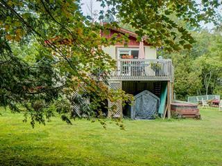 Maison à vendre à Mulgrave-et-Derry, Outaouais, 951, Chemin de la Mine, 27412958 - Centris.ca