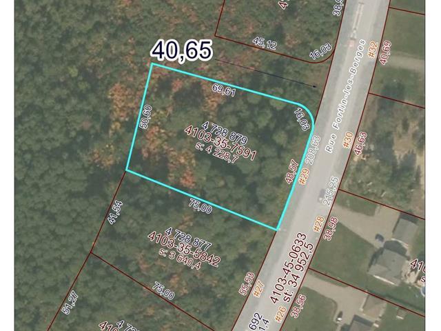 Terrain à vendre à Macamic, Abitibi-Témiscamingue, 29, Rue  Fortin-les-Berges, 22369641 - Centris.ca