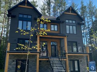 Condo for sale in Mont-Tremblant, Laurentides, 577, Rue  Charlie-Forbell, 27185355 - Centris.ca