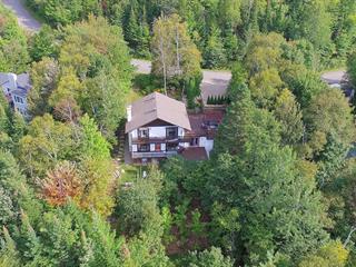 Maison à vendre à Saint-Sauveur, Laurentides, 130, Chemin de la Poutrelle, 13046900 - Centris.ca