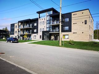 Condo / Apartment for rent in Sherbrooke (Les Nations), Estrie, 401, Rue du Chardonnay, apt. 201, 26161328 - Centris.ca