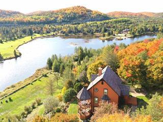 Maison à vendre à Saint-Faustin/Lac-Carré, Laurentides, 151, Allée du 15e, 28656799 - Centris.ca