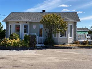 Bâtisse commerciale à vendre à Lac-aux-Sables, Mauricie, 578, Rue  Saint-Alphonse, 20942218 - Centris.ca