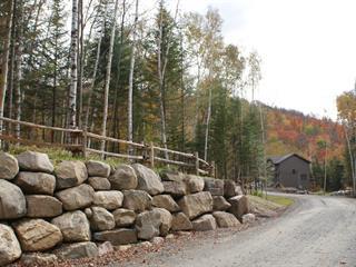House for sale in Saint-Faustin/Lac-Carré, Laurentides, 34, Chemin du Mont-Blanc, 21703169 - Centris.ca