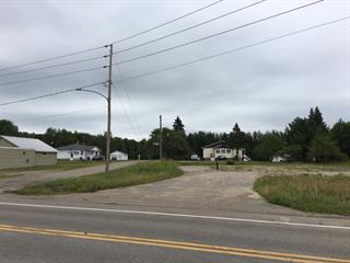 Lot for sale in Saint-Gabriel-de-Brandon, Lanaudière, 4860, Chemin du Lac, 14193253 - Centris.ca