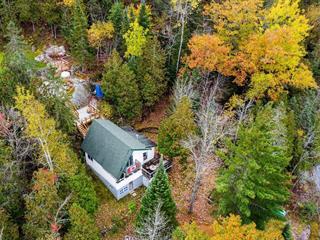 Cottage for sale in Bouchette, Outaouais, 115 - 117, Chemin  Charbonneau, 17558402 - Centris.ca