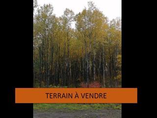 Terrain à vendre à Rouyn-Noranda, Abitibi-Témiscamingue, Rue  Leduc, 17987721 - Centris.ca