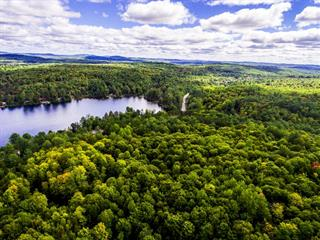 Land for sale in Otter Lake, Outaouais, Route  303, 21865852 - Centris.ca