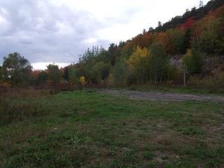 Terrain à vendre à Saint-Philippe-de-Néri, Bas-Saint-Laurent, 44, Route  230 Est, 19003254 - Centris.ca