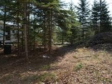 Terrain à vendre à Saint-Mathieu-du-Parc, Mauricie, Chemin des Sittelles, 25523307 - Centris.ca