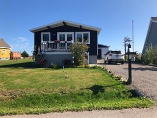 Maison à vendre à Les Îles-de-la-Madeleine, Gaspésie/Îles-de-la-Madeleine, 102, Chemin  Philippe-Thorne, 10015430 - Centris.ca