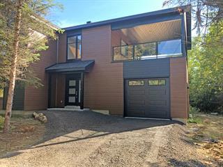 House for sale in Saint-Ferréol-les-Neiges, Capitale-Nationale, 52, Rue du Renard, 25355249 - Centris.ca