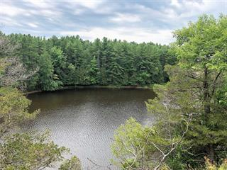 Terrain à vendre à L'Île-du-Grand-Calumet, Outaouais, 114, Chemin de la Montagne, 14577703 - Centris.ca