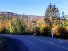 Terrain à vendre à Chertsey, Lanaudière, Chemin du Lac-Brûlé, 13312568 - Centris.ca