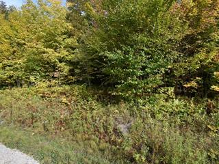 Lot for sale in Eastman, Estrie, Chemin du Mousqueton, 10292270 - Centris.ca