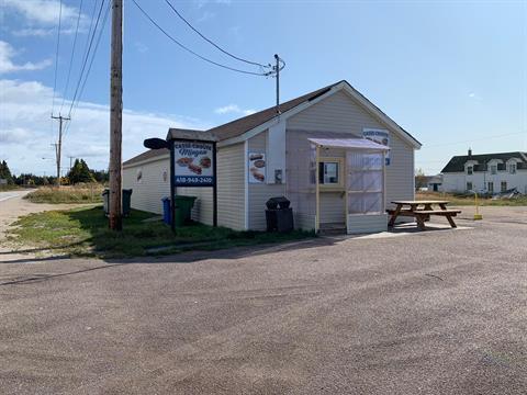 Commerce à vendre à Longue-Pointe-de-Mingan, Côte-Nord, 210A, Rue  Georges, 25869565 - Centris.ca