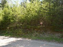 Terrain à vendre à Labelle, Laurentides, Chemin des Framboisiers, 21850764 - Centris.ca