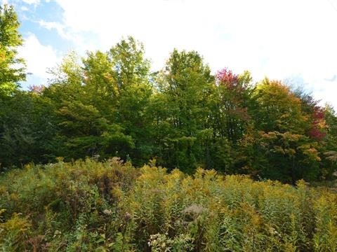 Lot for sale in Stukely-Sud, Estrie, Chemin  Robert-Savage, 15566258 - Centris.ca