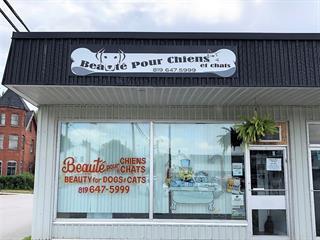 Business for sale in Shawville, Outaouais, 305, Rue  Main, suite H, 13773098 - Centris.ca