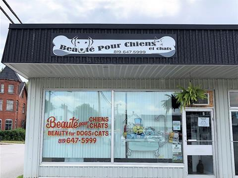 Business for sale in Shawville, Outaouais, 305, Rue  Main, suite H, 13773098 - Centris.ca