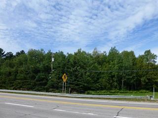 Terrain à vendre à Saint-Joachim, Capitale-Nationale, 158, Route  138, 21930141 - Centris.ca