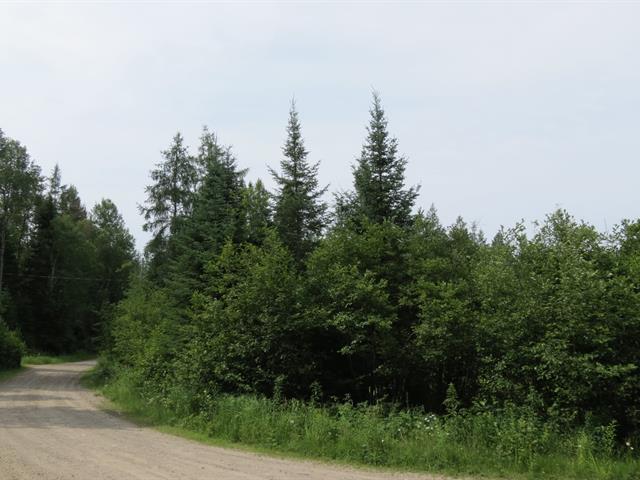 Terrain à vendre à L'Ascension, Laurentides, Chemin du Minot, 12933104 - Centris.ca