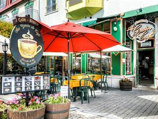 Commerce à vendre à Mont-Tremblant, Laurentides, 3035, Chemin de la Chapelle, local A-1, 28799227 - Centris.ca