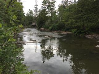Lot for sale in Mayo, Outaouais, 125, Chemin  McDonnell, 12849091 - Centris.ca