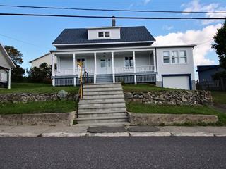 Maison à vendre à Saint-Louis-du-Ha! Ha!, Bas-Saint-Laurent, 1, Rue  Saint-Jean-Baptiste, 21973812 - Centris.ca