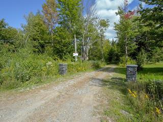 Maison à vendre à L'Avenir, Centre-du-Québec, 980, Rue  Bisaillon, 25055060 - Centris.ca