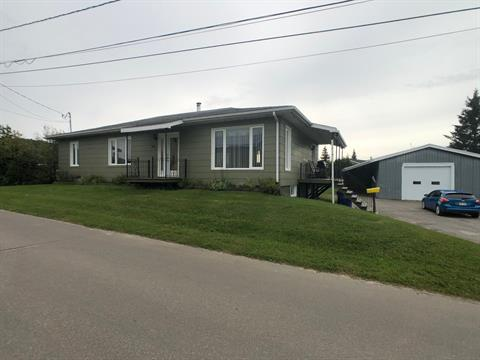 House for sale in Saint-André-du-Lac-Saint-Jean, Saguenay/Lac-Saint-Jean, 20, Rue du Collège, 27609540 - Centris.ca
