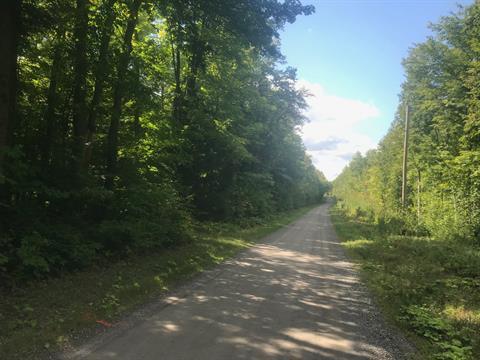Land for sale in Hinchinbrooke, Montérégie, Chemin  Gowan, 28241644 - Centris.ca