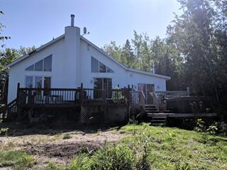 Maison à vendre à Saint-Marc-de-Figuery, Abitibi-Témiscamingue, 47, Chemin des Haut-Bois, 16601050 - Centris.ca