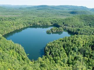 Land for sale in Notre-Dame-du-Laus, Laurentides, Chemin du Scorpion, 12277269 - Centris.ca