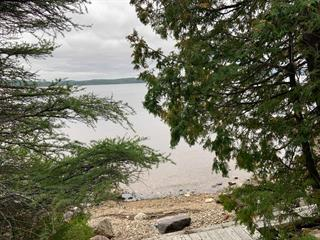 Lot for sale in Ville-Marie, Abitibi-Témiscamingue, 11, Chemin  Christiana, 27857187 - Centris.ca