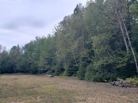 Lot for sale in Lac-Supérieur, Laurentides, Chemin  David, 24609884 - Centris.ca