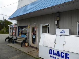 Bâtisse commerciale à vendre à Laverlochère-Angliers, Abitibi-Témiscamingue, 22, Rue de l'École-Centrale, 20184843 - Centris.ca
