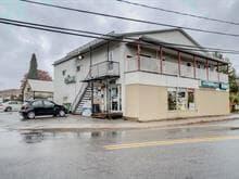 Commercial building for sale in Saint-André-Avellin, Outaouais, 166 - 168, Rue  Principale, 17693200 - Centris.ca