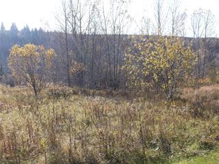 Terrain à vendre à Thetford Mines, Chaudière-Appalaches, 1568D, Rue  Saint-Désiré, 16493904 - Centris.ca