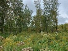 Lot for sale in Waterloo, Montérégie, rue de La vallée, 25432137 - Centris.ca