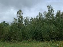 Lot for sale in Waterloo, Montérégie, rue de La vallée, 21350490 - Centris.ca