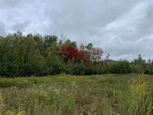 Lot for sale in Waterloo, Montérégie, rue de La vallée, 27995743 - Centris.ca
