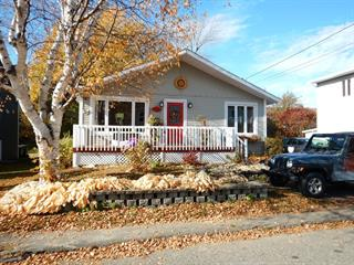House for sale in Notre-Dame-des-Neiges, Bas-Saint-Laurent, 29, Rue  Saint-Jean-Baptiste, 11813949 - Centris.ca