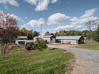 Fermette à vendre à Saint-Émile-de-Suffolk, Outaouais, 153 - 155, Chemin du Lac-Lévesque, 26918093 - Centris.ca