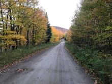 Terrain à vendre à Notre-Dame-des-Bois, Estrie, 93, Chemin de l'Ours, 16438496 - Centris.ca